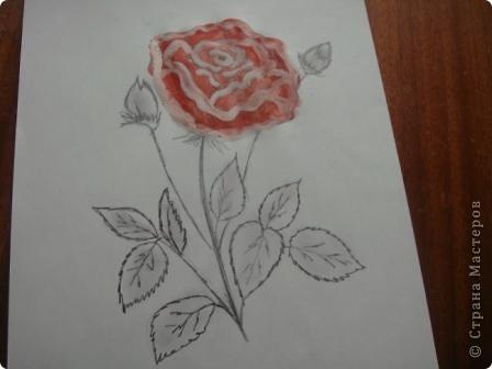 Маленький МК  разукрашивания моей розы. фото 3