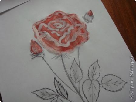 Маленький МК  разукрашивания моей розы. фото 4