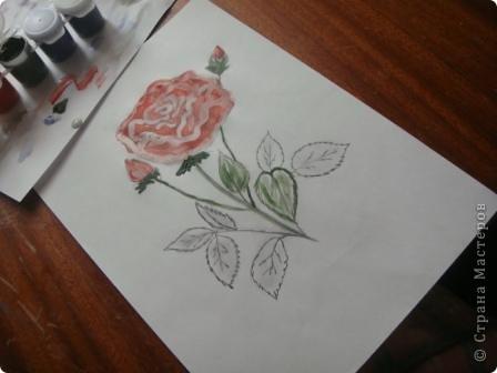 Маленький МК  разукрашивания моей розы. фото 5