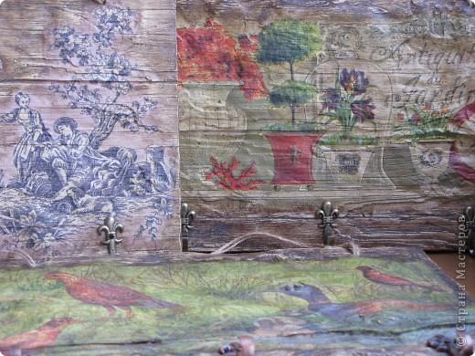 Старое дерево на гипсе. фото 1