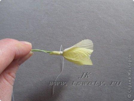 Мастер-класс цветы из ткани.   Белая роза без специальных инструментов.  Гофрированная. фото 25