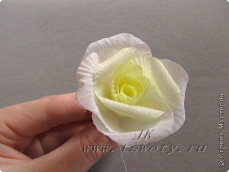 Мастер-класс цветы из ткани.   Белая роза без специальных инструментов.  Гофрированная. фото 29