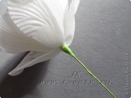 Мастер-класс цветы из ткани.   Белая роза без специальных инструментов.  Гофрированная. фото 30