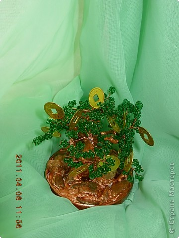 денежное дерево... фото 3