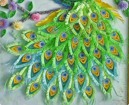 Прежде всего хочу сказать большое спасибо за МК Ольге Ольшак, которая вдохновила меня на создание этих прекрасных птиц. По этим МК я училась бумагокручению. фото 2