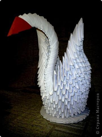 Лебедь белый=)