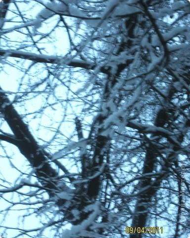 """""""Мама! глянь-ка из окошка -  Знать, вчера недаром кошка  Умывала нос:  Грязи нет, весь двор одело,  Посветлело, побелело -  Видно, есть мороз. """" Вот такую картину увидели утром глядя в окно... фото 3"""