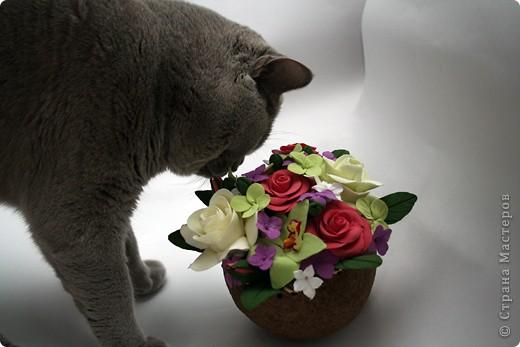 Орхидеи, гардении, розы ) фото 5