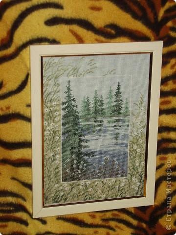 Подарок для директора на день рождения, вышивала 2месяца. фото 10