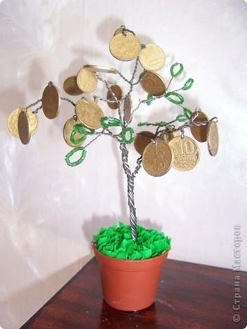 Мой денежный сад фото 3