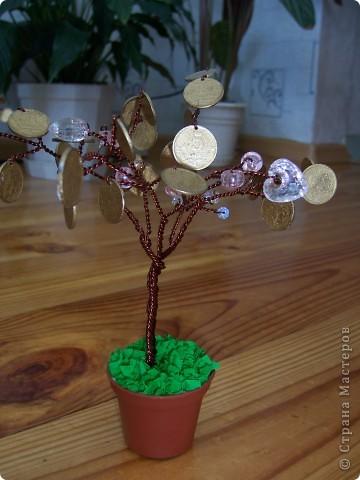 Мой денежный сад фото 5