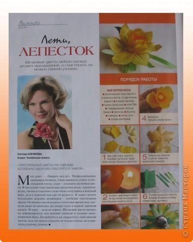 МК. Нарцисс. фото 2