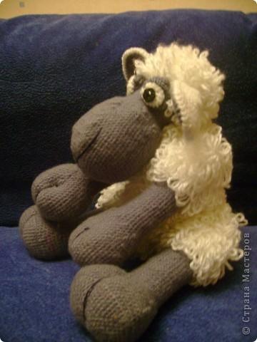 Это виновница моего увлечения вязанными игрушками. Большое спасибо за нее автору Паоле Новарро. фото 3