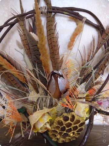 Панно из перьев, сухоцветов. Каркас из виноградной лозы. Захотелось немного экспромта... фото 2