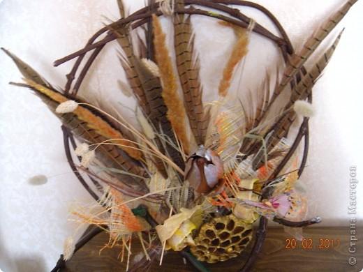 Панно из перьев, сухоцветов. Каркас из виноградной лозы. Захотелось немного экспромта... фото 1
