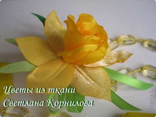 МК. Нарцисс. фото 1