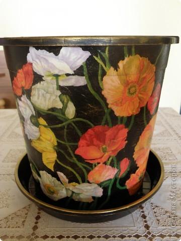 Вот и золота добавила, бортик покрасила, тарелочку тоже привела в порядок, в нем уже живет мой цветочек. фото 1