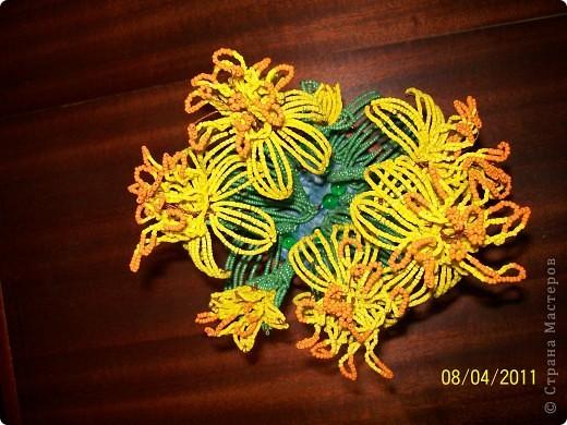Жёлтенькие... фото 3