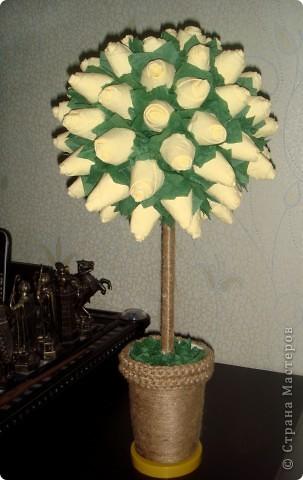 моё счастье и дерево из роз фото 2