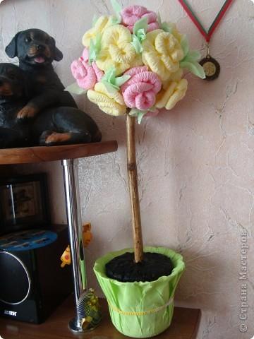Деревце из роз