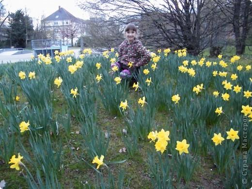 Наконец-то весна! фото 10