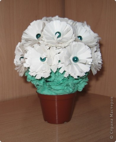 миниатюрный цветок