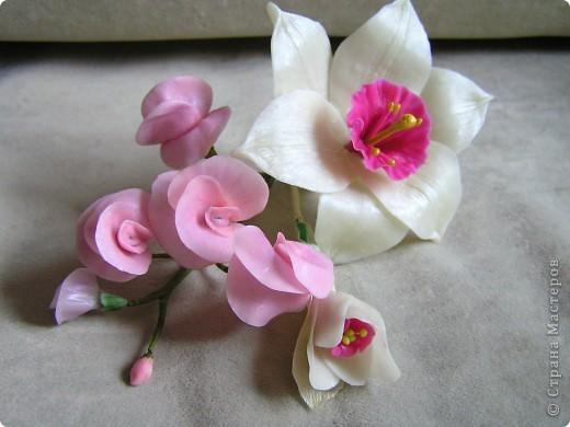С розовым душистым горошком фото 1