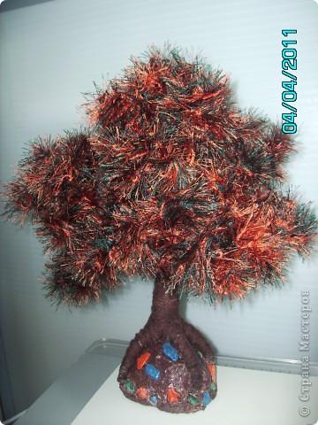 Шикарные деревья фото 2
