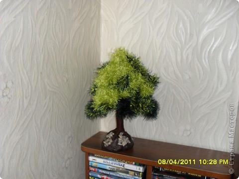 """Очень понравилось мастерить дерево из пряжи """"травка"""" и вот, что получилось. фото 1"""