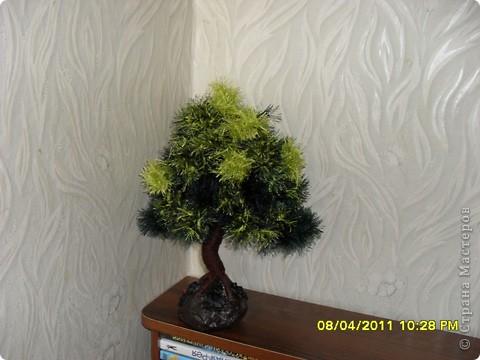 """Очень понравилось мастерить дерево из пряжи """"травка"""" и вот, что получилось. фото 2"""