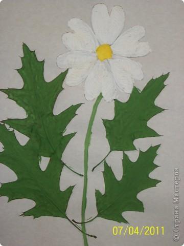 Сушеные цветы и манная крупа фото 4