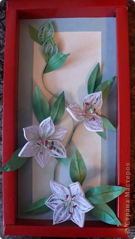 В качестве рамочки использовала коробку от шоколадных конфет, фон подкрасила пастелью, паспарту из обыкновенного картона. Для листочков брала бумагу для апликаций, так как другой у меня в наличии нет. В итоге вот что получилось. Не судите строго - учусь... Огромное спасибо Пылинке за МК