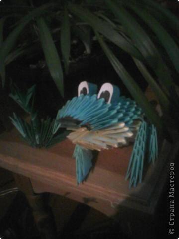 лягушка в траве фото 1
