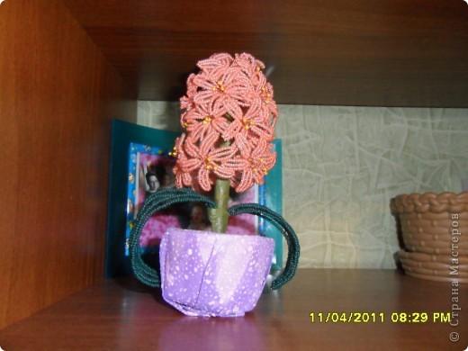 А это моя дочурка с розами фото 4