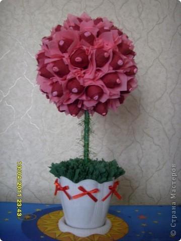 розовая мечта,,,,,,, фото 1