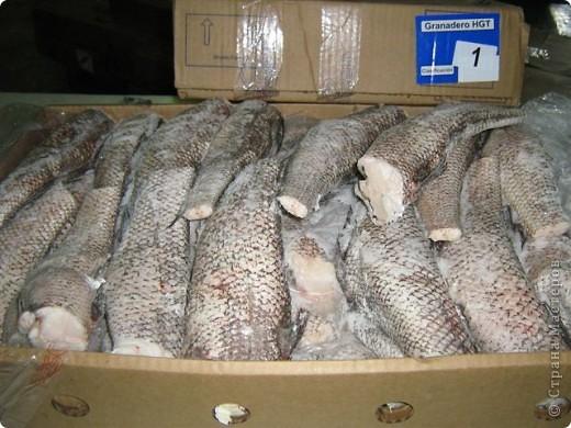 Гренадёр практически не имеет специфического рыбного запаха, он относится к маложирным и низкобелковым рыбам. В его мясе достаточно большое содержание воды, поэтому его мясо очень нежное, но слабое. Готовить гренадёра нужно, не размораживая окончательно. Из гренадёра получаются очень вкусные супы, рубленые изделия, заливные блюда, а также его можно жарить и тушить. Печень и икра гренадёра считается деликатесам.    Эта рыба по своим вкусовым качествам во многом превосходит атлантическую треску.    Необходимо помнить о том, что вся морская рыба чрезвычайно полезна для нашего организма. В рыбе содержится большое количество витаминов, минералов и микроэлементов. К тому же содержащийся в рыбе йод жизненно необходим всем людям, особенно детям и старшему поколению. В мясе рыбе содержится фосфор и кальций, так полезные для формирования всей костно-мышечной системы. фото 1