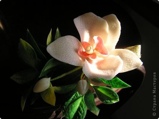 Орхидея для комплекта фото 5