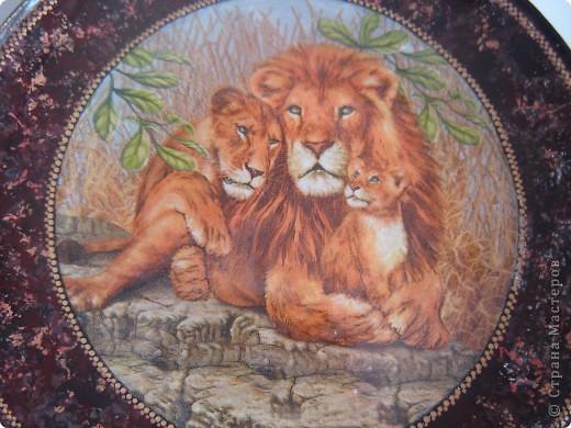"""Здравствуйте уважаемые мастерицы СМ. Выставлю на Ваш суд 2 работы, но сначала хочу рассказать маленький эпизод из сказки.  Когда Лев стал царем зверей, он сказал: """"Если кто-нибудь из Вас скажет, что я самый сильный,  самый храбрый, самый мудрый и самый красивый, того я разорву на части."""" В это врем появилась прекрасная львица и влюбилась в льва с первого взгляда. Она сказала: """"Ты можешь разорвать меня на части, но я  вся равно скажу, что ты самый сильный, самый храбрый, самый мудрый и самый красивый"""". Лев не разорвал львицу на части, потому что он понял, что кого любят, тот всегда становится самым-самым-самым-самым.  Ну если я немного изменила текст, извините, писала  по памяти. Перед Вами 1-я работа со вспышкой. фото 3"""