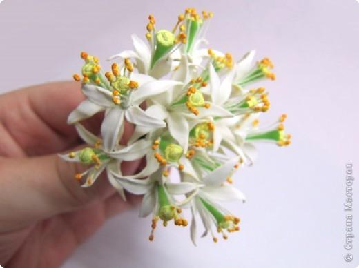 Как я уже говорила, у моей подруги скоро свадьба, и мне было поручено создание украшений к сему замечательному празднику, а именно - я делаю цветочный венок на голову невесте)))) фото 6