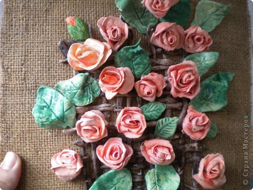 мои цветы фото 4