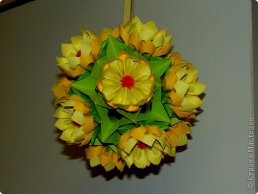 Желтые ромашки фото 1