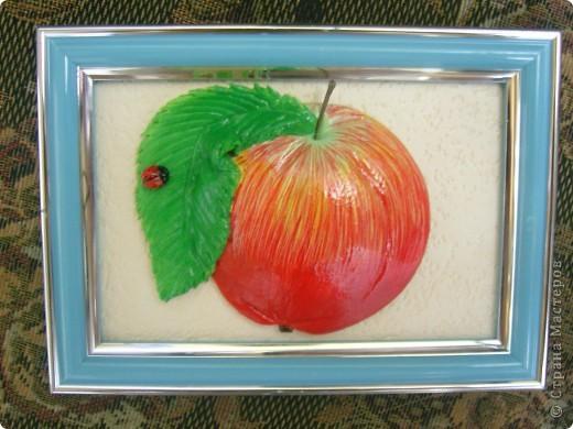 Моё первое яблочко...