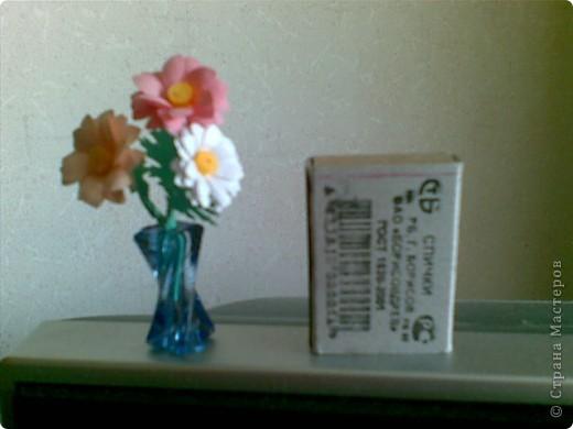 мини-цветы фото 4