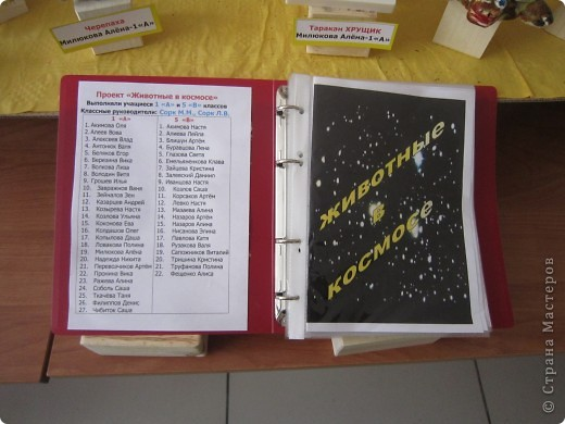 Творческий проект учащихся 1 А и 5 В классов фото 6