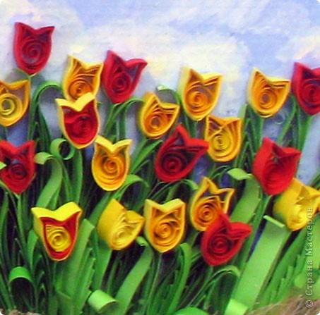 Доброго времени суток всем! Я понимаю, это уже не смешно, но снова тюльпаны... Только теперь сравнительно крупнее.. Резала полоски по 1,5 см шириной, и склеивала 3 полосы по 30 см, это для цветка, и три полосы для листьев. Фон рисовала гуашью, прямо на картонной основе рамки. фото 2