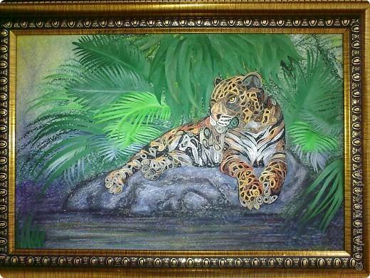 Леопард фото 11