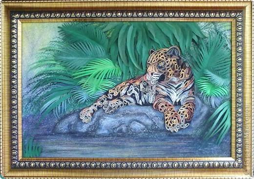 Леопард фото 12
