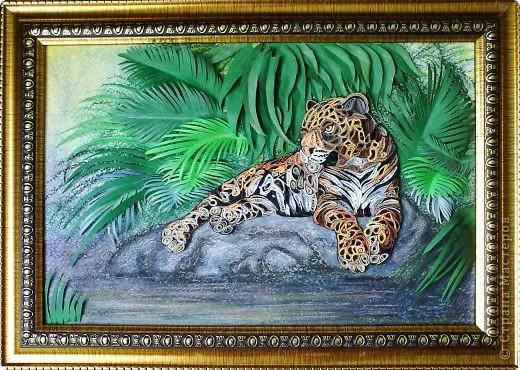 Леопард фото 13