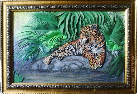 Леопард фото 14