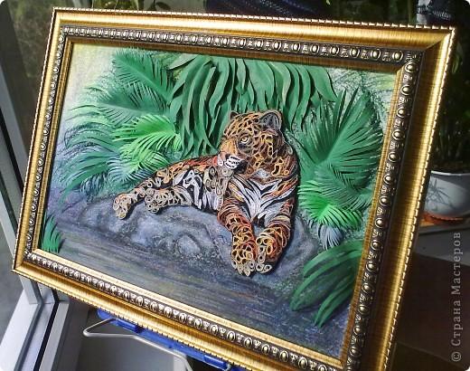 Леопард фото 15